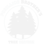 Posillico Brother's Tree Service